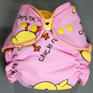 SALE! NB AI2 ~ Chicks Rule ~ 25% off!